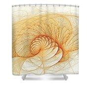 Cotillion Collective Shower Curtain