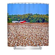 Cotton And The Red Barn Shower Curtain