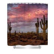 Cotton Candy Pink Sonoran Sunrise  Shower Curtain
