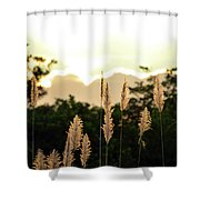 Cotton Candy Sunset 2 Shower Curtain