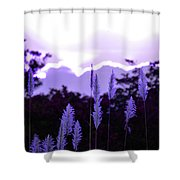 Cotton Candy Sunset 3 Shower Curtain