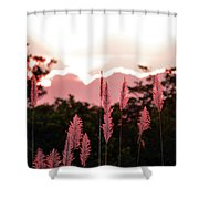 Cotton Candy Sunset 4 Shower Curtain