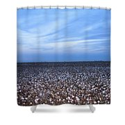Cotton Fields At Dusk Casa Grande Arizona 2004 Shower Curtain