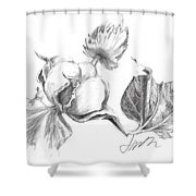 Cotton Harvest Shower Curtain