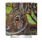Cotton Tail Rabbit Shower Curtain