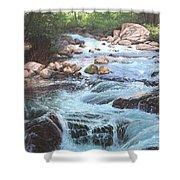 Cotton Wood Creek #4 Shower Curtain
