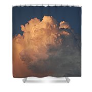 Cottonballs Shower Curtain