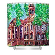 Cottonwood County Courthouse  Shower Curtain