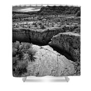 Cottonwood Creek Water Drainage 1 Bw Shower Curtain