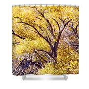 Cottonwood Golden Leaves Shower Curtain