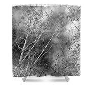 Cottonwood Skies Shower Curtain