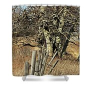 Cottonwood Stand Shower Curtain