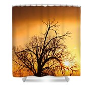 Cottonwood Sunrise - Vertical Print Shower Curtain