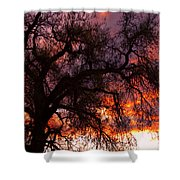 Cottonwood Sunset Silhouette Shower Curtain