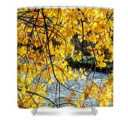 Cottonwood Tree Along The River Shower Curtain