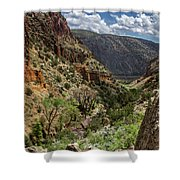 Cottonwoods In The Canyon Shower Curtain