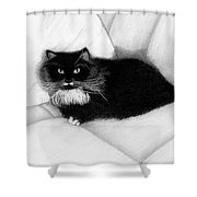 Couch Potato Shower Curtain