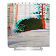 Cougar - Use Red-cyan 3d Glasses Shower Curtain