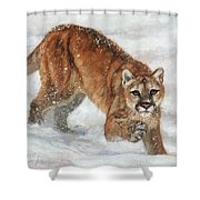 Cougar In The Snow Shower Curtain