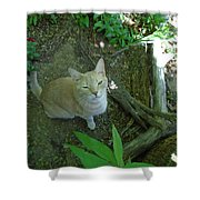 Cougar In The Woods Shower Curtain
