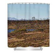 Counterpoint Shower Curtain