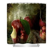 Country Apple 2 Shower Curtain