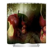 Country Apples Shower Curtain