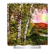 Country Birch Shower Curtain