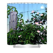 Country Calm Shower Curtain