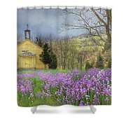 Country Charm School Shower Curtain by Lori Deiter