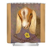 Country Charms Nubian Goat With Daisy Shower Curtain