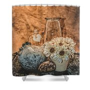 Country Chicken 2 Shower Curtain