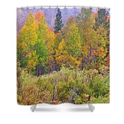 Country Colors Shower Curtain