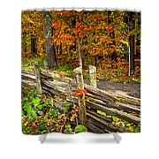 Country Road In Autumn Forest Shower Curtain