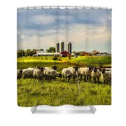 Country Sheep Shower Curtain