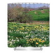 Country Spring Shower Curtain