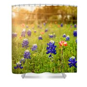 Country Wildflowers Shower Curtain