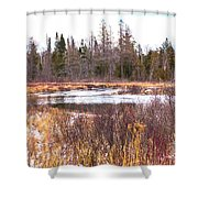 Country Winter 11 Shower Curtain