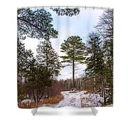 Country Winter 14 Shower Curtain