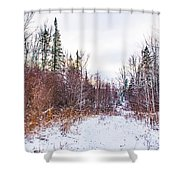 Country Winter 6 Shower Curtain