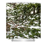Country Winter 8 Shower Curtain