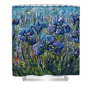 Countryside Irises Oil Painting With Palette Knife Shower Curtain