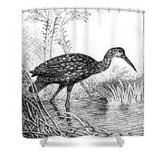 Courlan Shower Curtain