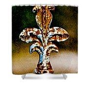 Court Jester Shower Curtain by Scott Pellegrin