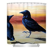 Courting Crows Shower Curtain