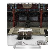 Courtyard In The Snow Shower Curtain