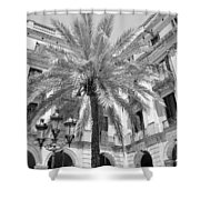 Courtyard Palm Shower Curtain
