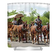Coverd Wagon Shower Curtain