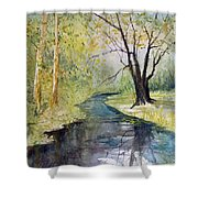 Covered Bridge Park Shower Curtain