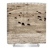 Cow Droppings Shower Curtain